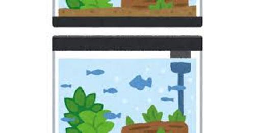 水槽 ミジンコ 水質 メリット