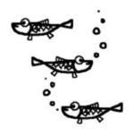 メダカの稚魚の餌は生きているミジンコがおすすめ!